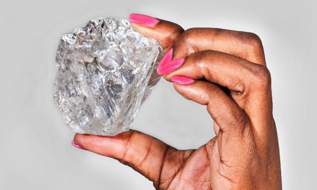 lucaradiamond630